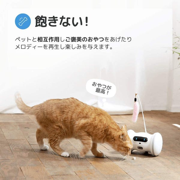 VARRAM ペット専用ロボット 犬と猫のためのロボット VRPF1000
