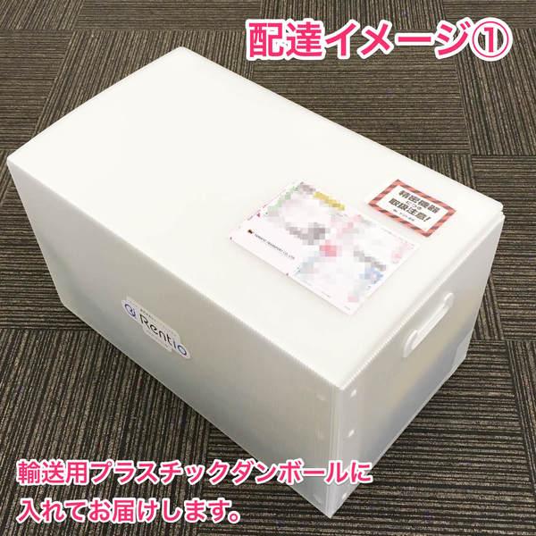 ケルヒャー 家庭用高圧洗浄機 ベランダクリーナー K3サイレント(K3-50) [50Hz東日本用] 水道ホース付き