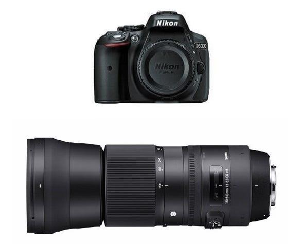 NIKON D5300 ボディ 一眼レフ と Sigma 150-600mm F5-6.3 DG OS HSM Contemporary (ニコンFマウント) セット