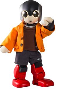 【ロビ専用】 ウェア ジャケット(ツーピース) オレンジ&ブラウン×グレー