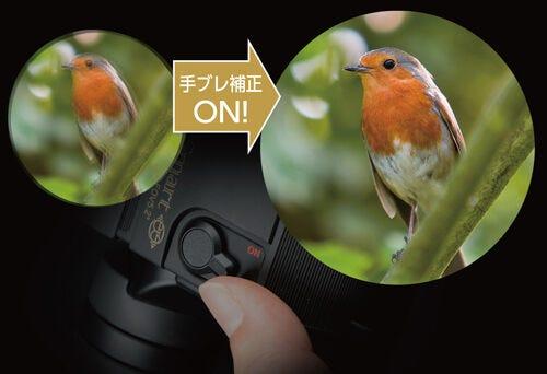 Kenko ケンコー 防振双眼鏡 VC Smart コンパクト 12×21 倍率12倍