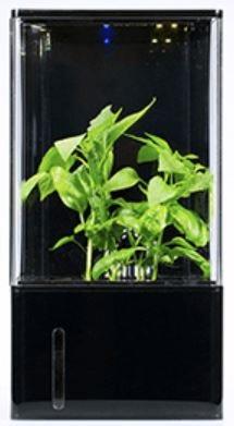 EcoQube Air  植物を育てるだけでなく室内の空気もキレイにする室内用水耕栽培温室 / 空気清浄
