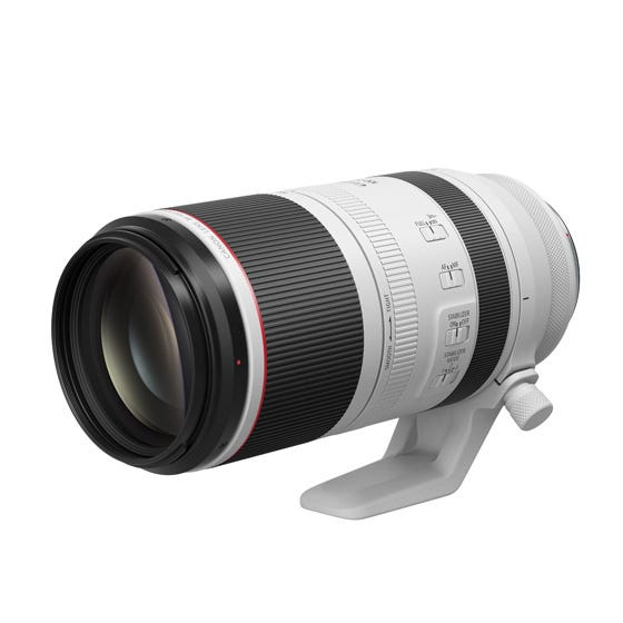 Canon RF100-500mm F4.5-7.1 L IS USM 望遠ズームレンズ